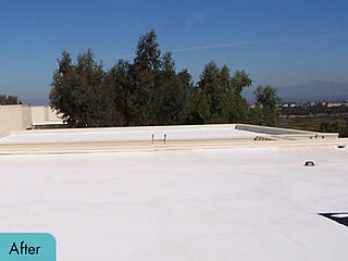 SPF Roofing System