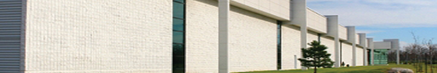 wall-image-top