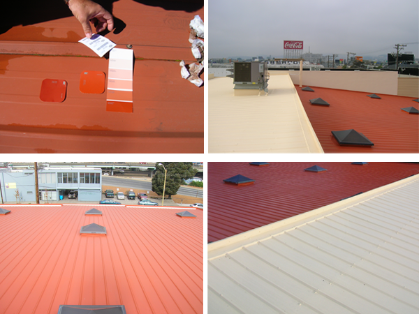 Metal-Roof-Pictures