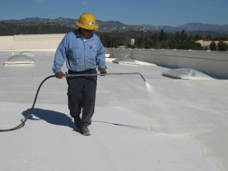 Reflective White Roof Paint