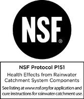 NSF P151 Mark_Black-1.jpg