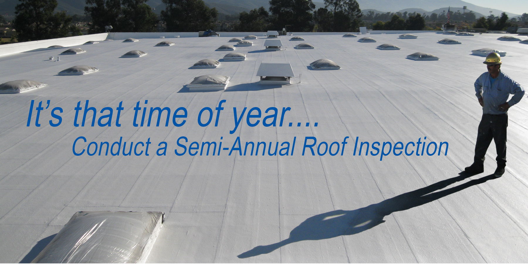 SemiAnnual Inspection 2021