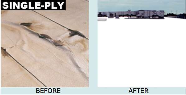 Single-Ply-Before-After